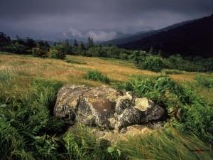 Una roca en medio del campo