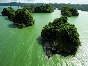 Postal: Península de Samaná (República Dominicana)