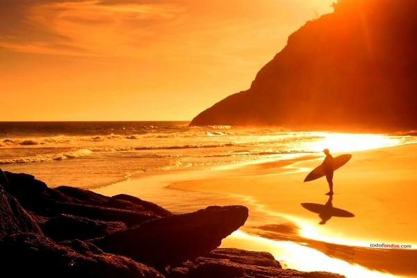 Playa dorada por el sol