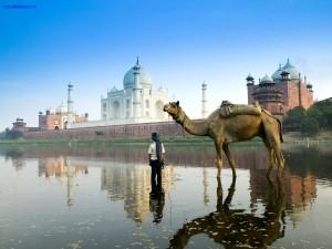 Postal: El río Yamuna a su paso por el Taj Mahal en Agra (India)