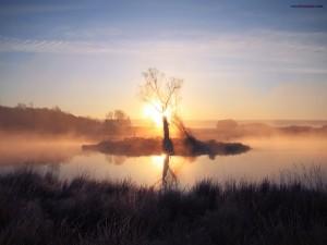 Isleta pantanosa