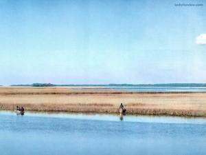 Río Kiawah, Carolina del Sur
