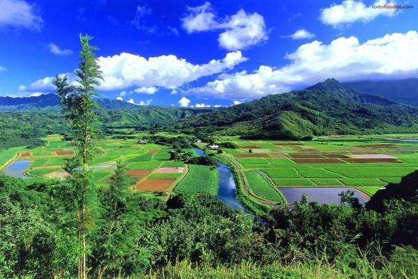 Valle Hanalei, Kauai, Hawái