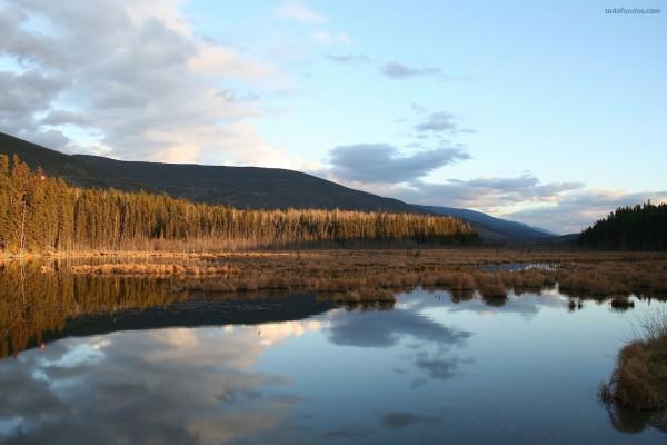 Un lago de aguas tranquilas antes del invierno
