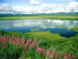Postal: Lago reflejando las nubes
