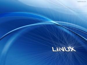 Linux destelleante