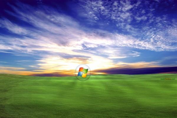 Logo de Windows en un campo de hierba al amanecer