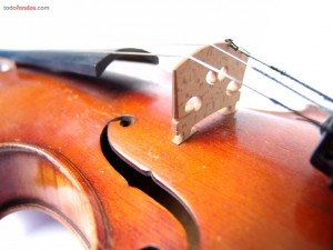 Postal: Las cuerdas de un violín