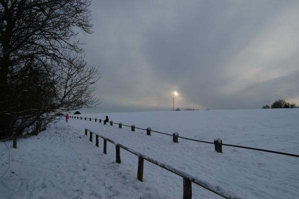 Llanura nevada