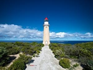 Postal: Faro de la Isla Canguro (Australia)