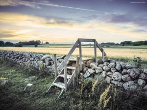 Escaleras para pasar la cerca