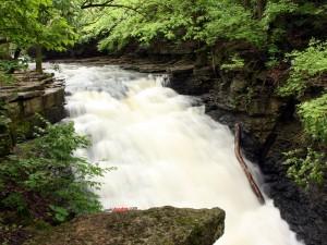 Agua fluyendo por el cauce del río
