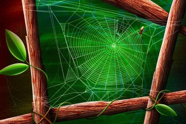Telaraña verde