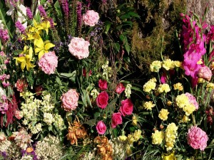 Flores marchitándose