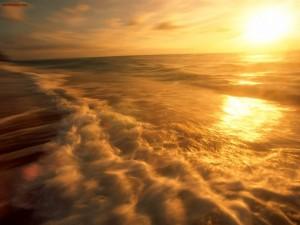 Una playa dorada