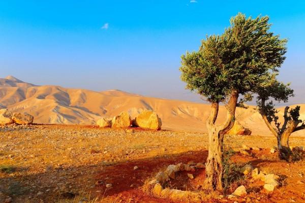 Montañas de Judea, cerca del Mar Muerto, en Jerusalén