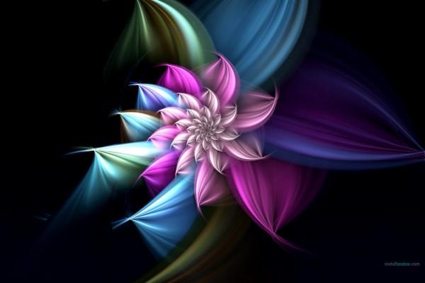 Una hermosa flor digital