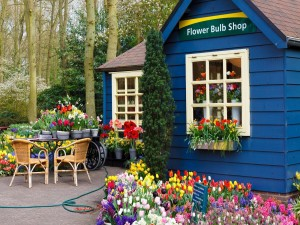 Tienda de flores cerca del bosque