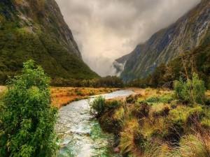 Río en descenso por las montañas