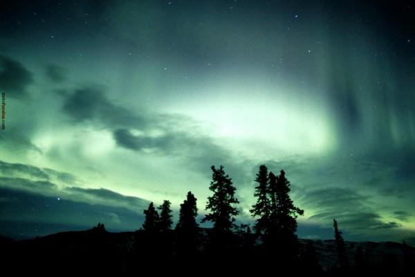 La aurora polar tiñendo el cielo de verde