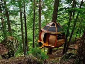 Una habitación en el bosque (Whistler, Canadá)