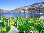 Lago Tahoe, entre California y Nevada (Estados Unidos)