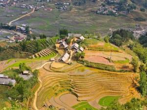 Postal: Terrazas de arroz en Ta Van (Vietnam)