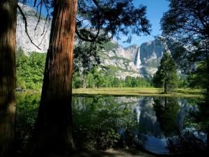 Cascada reflejada en el agua