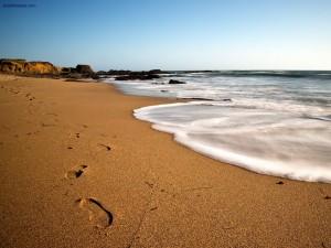 Postal: Paseando por la playa