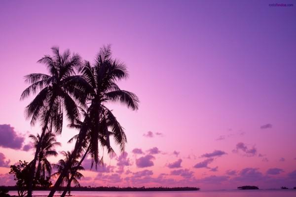 Playa morada