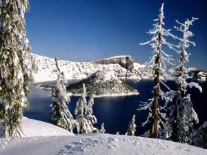 Postal: Isla nevada