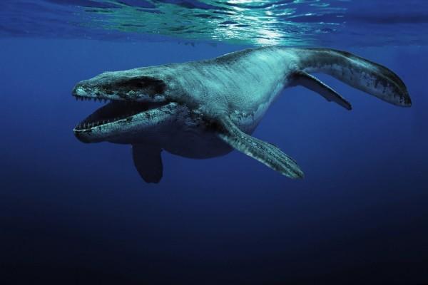 El Prognathodon (animal extinto del Cretácico superior)