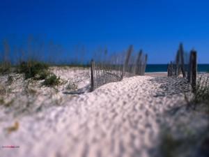 Camino de arena blanca a la playa