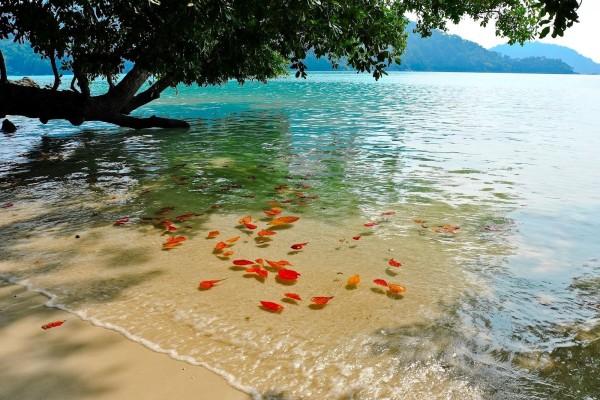 Playa en Surín (Tailandia)