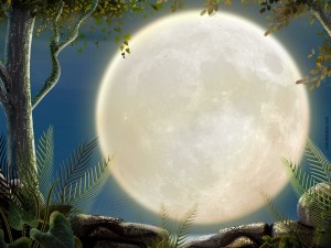 Postal: Una gran luna llena