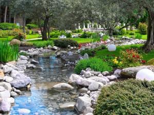 Jardín con un riachuelo, plantas y flores de colores