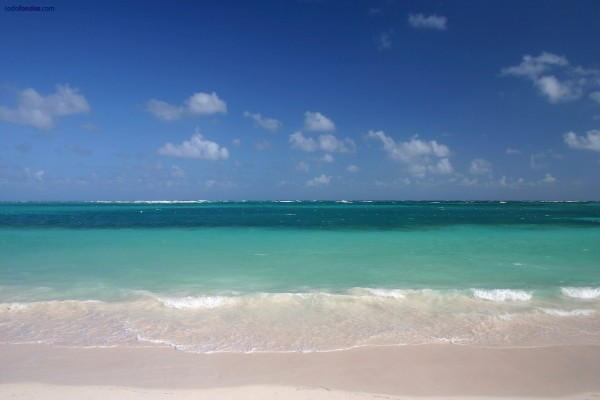 Playa de aguas verdes y arena blanca