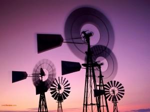 Postal: Molinos de viento de Marchigüe (Chile)