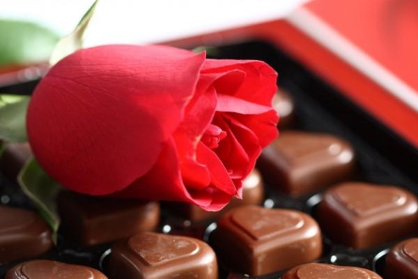 Una rosa roja con bombones de chocolate