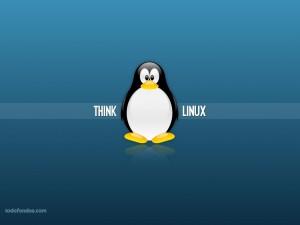Piensa en Linux
