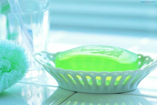 Jabón en su jabonera