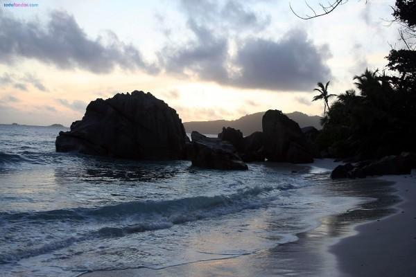 Playa de rocas y palmeras