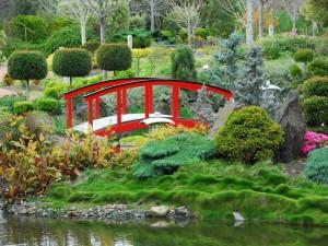 Postal: Puente rojo en un jardín japonés