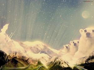 Osos por montañas