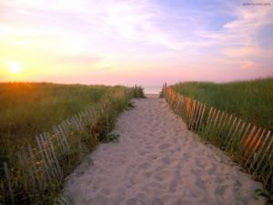 Camino vallado de arena, a la playa