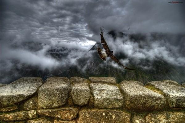 Planeando entre las nubes