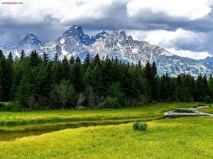 Postal: Un prado verde al pie de las montañas