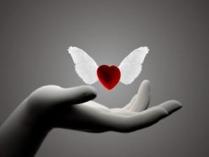 Liberando un corazón