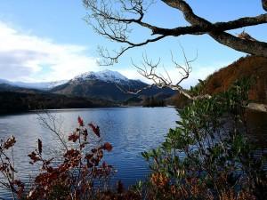 Postal: Lago y montañas