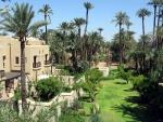 Palmeral en Marrakech (Marruecos)